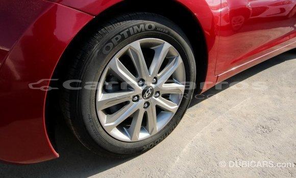 Comprar Importar Carro Hyundai Elantra rojo en Import - Dubai en Alajuela